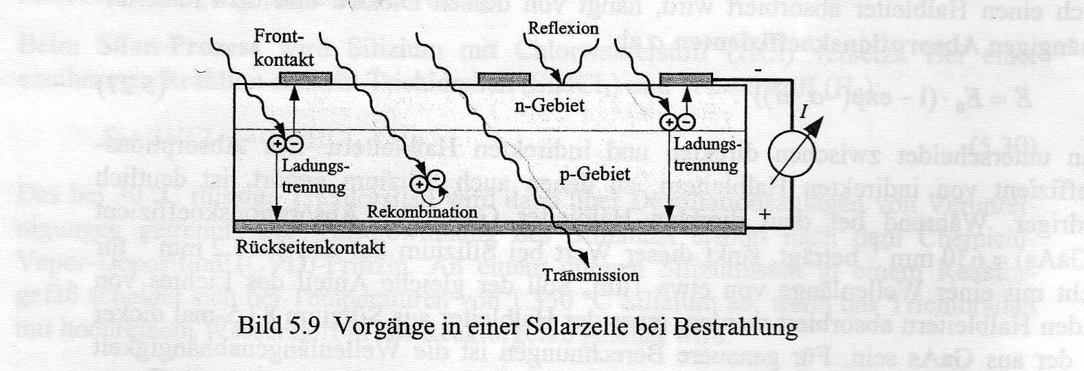 Diese Abbildung zeigt den Querschnitt einer Solarzelle mit dem ganzflächigen Rückseitenkontakt, dem Halbleiter bestehend aus p- und n-Gebiet und den frontseitig angebrachten Fingerkontakten